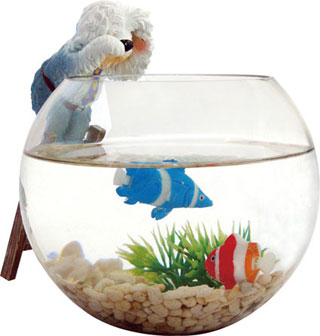 Fish bowl-cheer up-featured aquarium