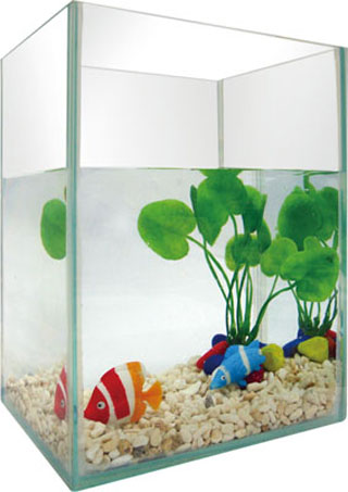 Fish tank-5pc-featured  aquarium