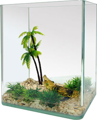 Fish tank-3pc-featured aquarium
