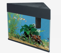 NEW! Triangular Aquarium (20/5Ga)