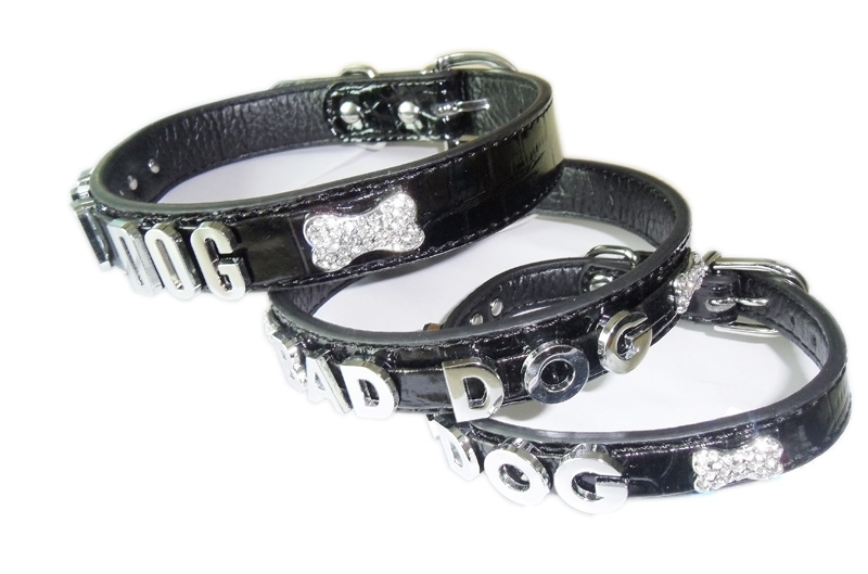 Dog collar with bone and letter