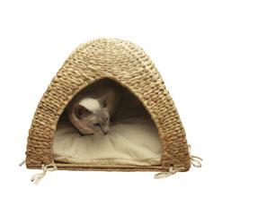 Cat house with white cushion