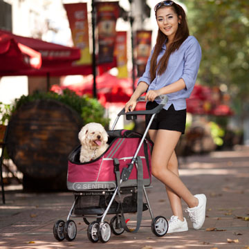 Pet Stroller with pet carrier