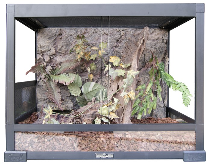 Reptile terrarium - Reptile Terrarium - China Terrariums Suppliers & Manufacturers