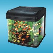DMS Dream Aquarium