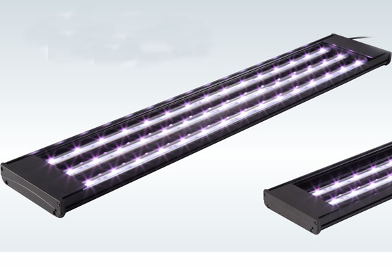 MAGIC LED FIXTURE