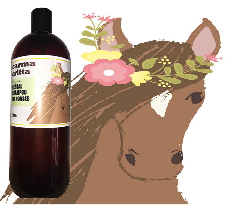 Herbal Shampoo for Horses 1 ltr