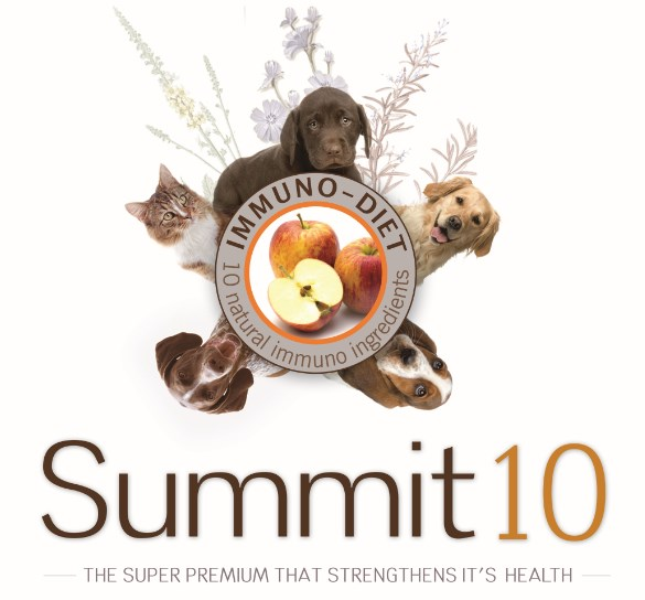 Summit10 Dog