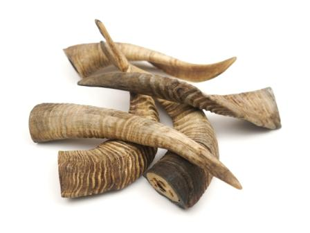Goat Horns all sizes and packing requirements  OEM Private label