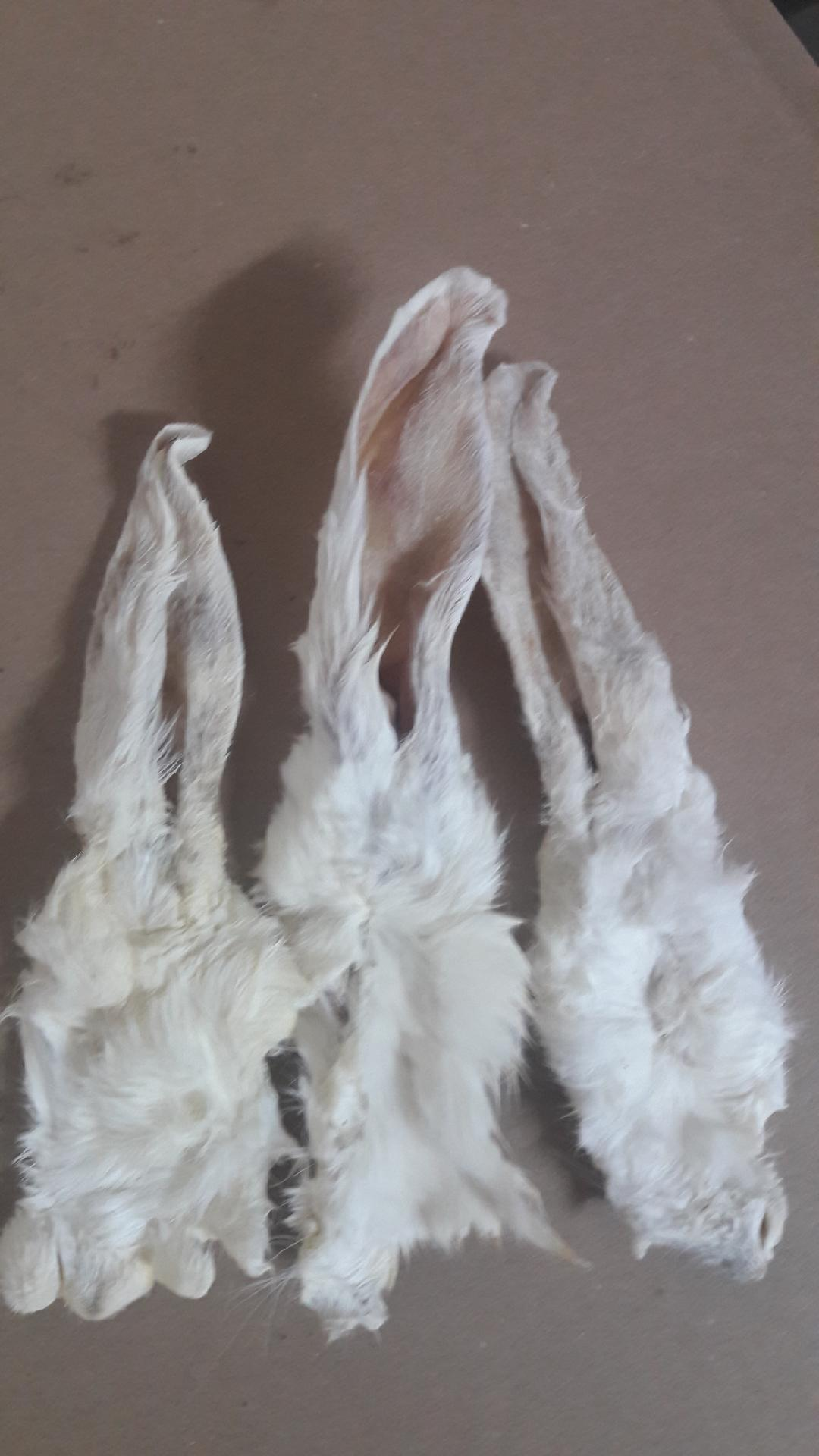 Dried rabbit ear,  chicken feet, duck feet and more NATURAL DOG CHEW