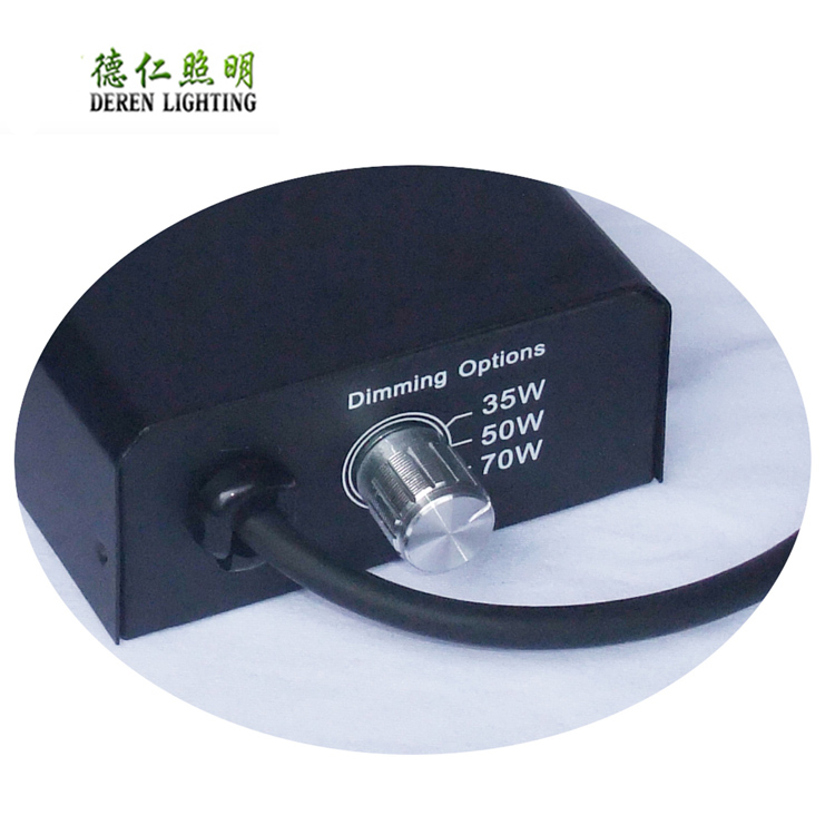 35W 50W 70W 100W 150W Electronic Ballast for UVB Metal Halide Lamps
