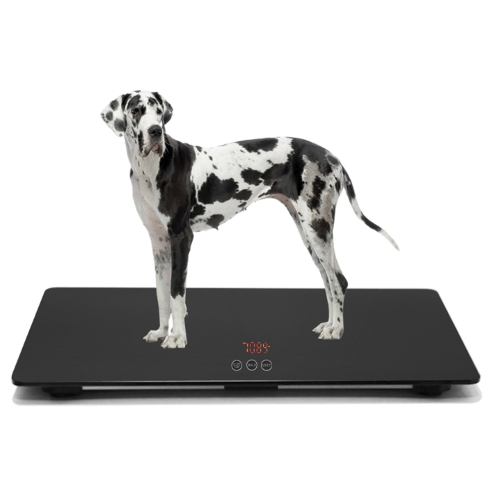 Pet weight scale capacity 100KG KG/LB switchable use for home and clinic hospital big dog scale