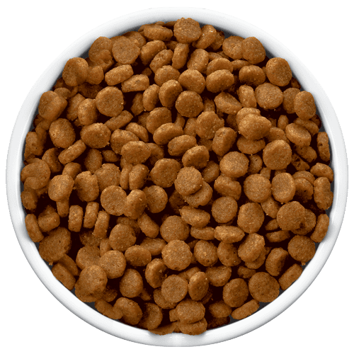 Dry Dog Food OEM Service