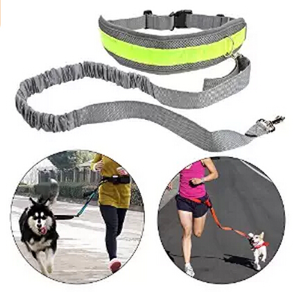 Hands Free Dog Leash for Running, Walking, Hiking, Durable Dual-Handle Bungee Leash, Reflective Stitching