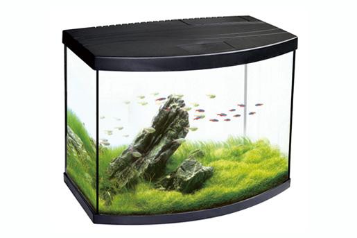 Oasis Aquarium
