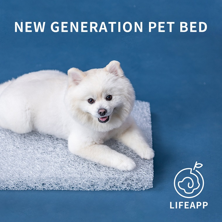 LIFEAPP Washable Dog Bed