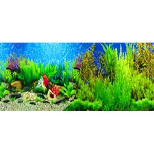 blue hawaiiblue seaweed background paper