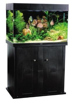 AA Aquarium ORIENT 160 (160L / 37 US Ga)