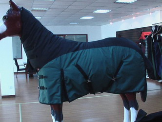 Sell horse rug, horse halter