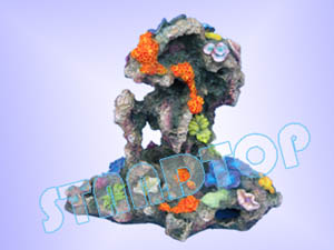Sell Medium Combined Coral